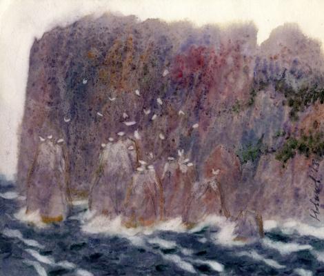 Novikov Anatolyevich Vladimir. Big cliff