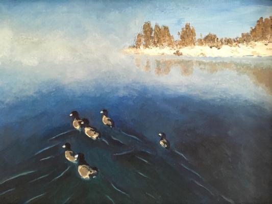 Larisa Benko. Issyk-Kul ducks