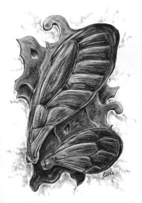 Platon Nikolayevich Starodubov. Insect wings on pine bark