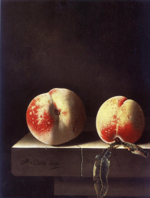 Адриан Коорт (Коорте). Два персика
