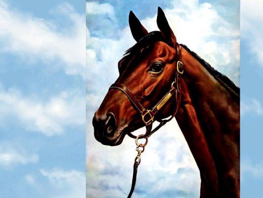Дональд Шварц. Лошадь 5