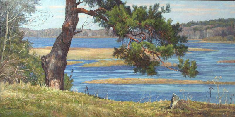 Oleg Borisovich Zakharov. Over the flood. ( PushGory )