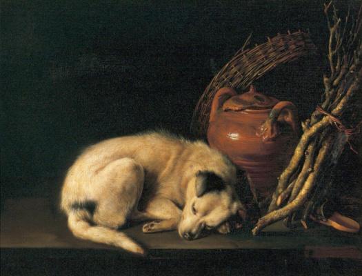 Геррит Доу. Собака