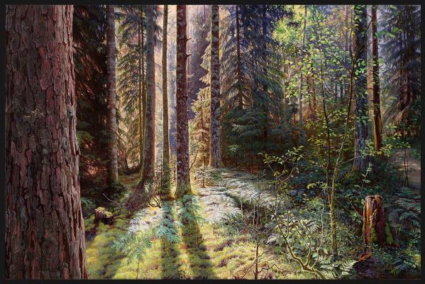 Sushienok64 @ mail.ru Mikhailovich Sushenok Igor. Forest.