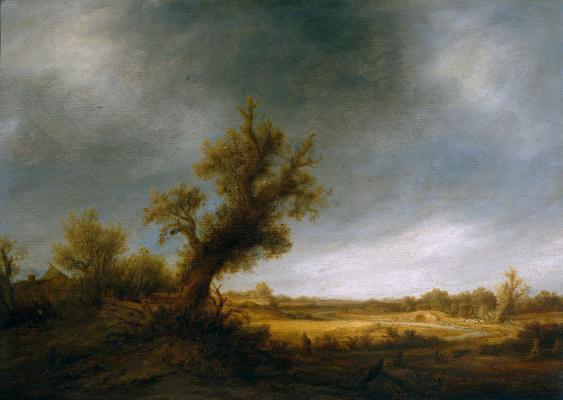 Ван де Оста. Старый дуб