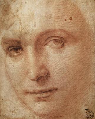 Рафаэль Санти. Портрет юноши