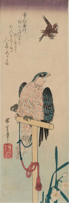 """Utagawa Hiroshige. Falcon, watching the Sparrow, and daffodils. Series """"Birds and flowers"""""""