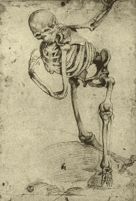 Alessandro Allori. Skeleton
