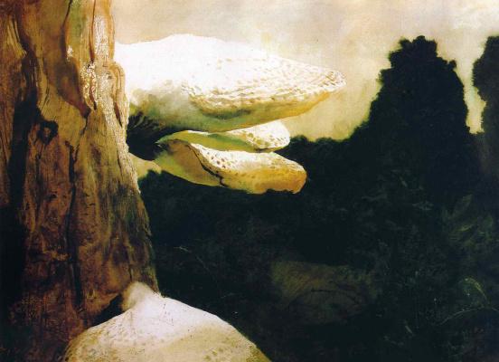 Jamie Wyeth. Tree