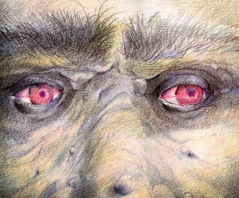 Дэвид Йоргенсен. Злые глаза