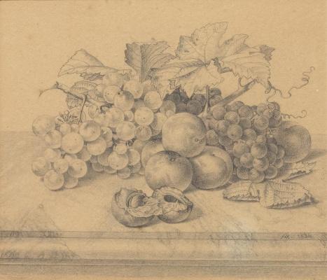 Иоганн Вильгельм Прейер. Натюрморт с фруктами и орехами на мраморном столе. 1834