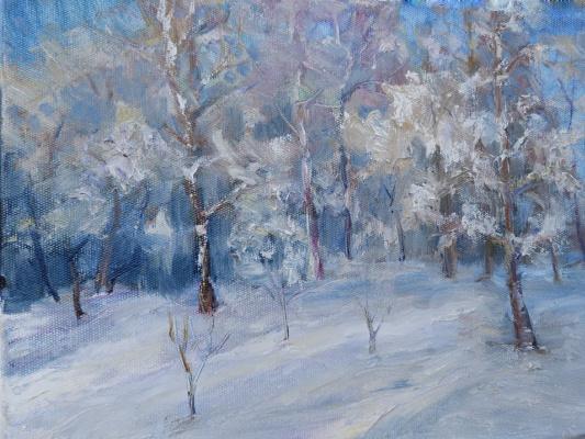 Надежда Георгиевна Шацкая. После снегопада