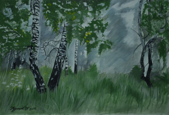 Kuznetsov. N.. Moody birch