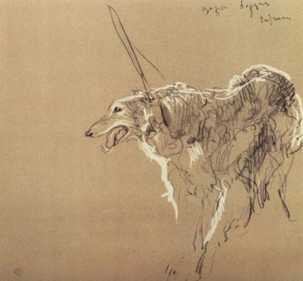 Greyhound Royal hunting