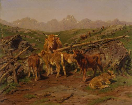Rose Bonhur. Weaning of calves