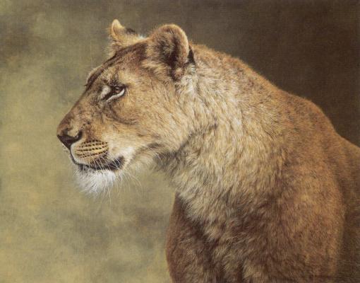 Хорхе Майоль. Портрет львицы