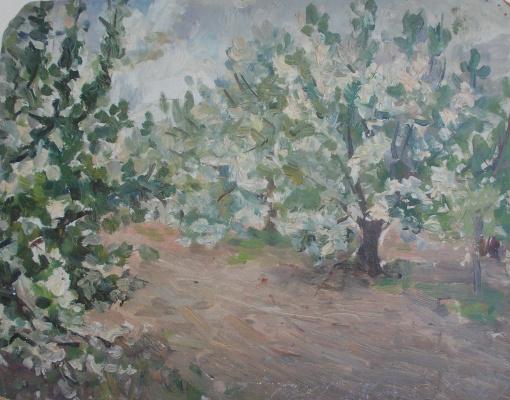 Nina Vasilievna Sedova. Apple trees