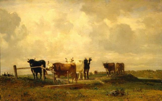 Констан Тройон. Коровы на пастбище