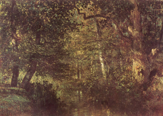 Протока в лесу
