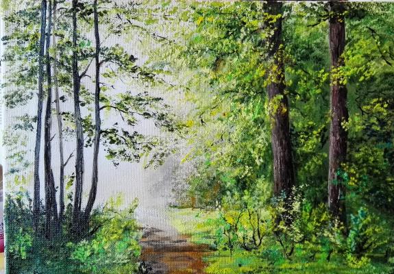 Алина Евгеньевна Шварёва (Галкина). Sun in the forest