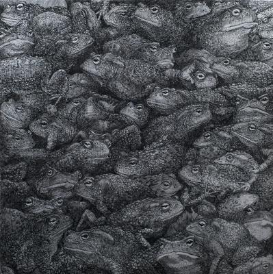 Антон Николаевич Батанов. Всюду жабы