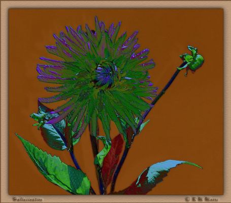 Р. М. Мур. Зеленый цветок