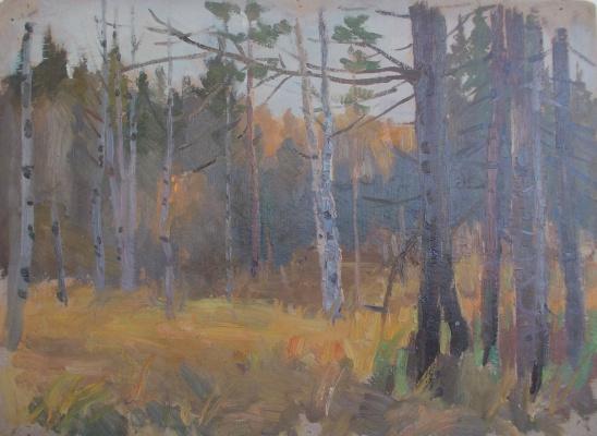 Nina Vasilievna Sedova. Autumn forest