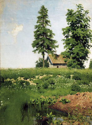 Hut on the meadow. Etude