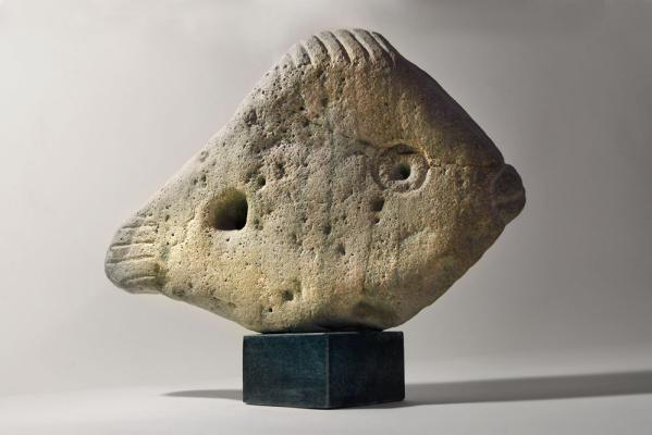 Robert Petracovich Avagyan. A fish