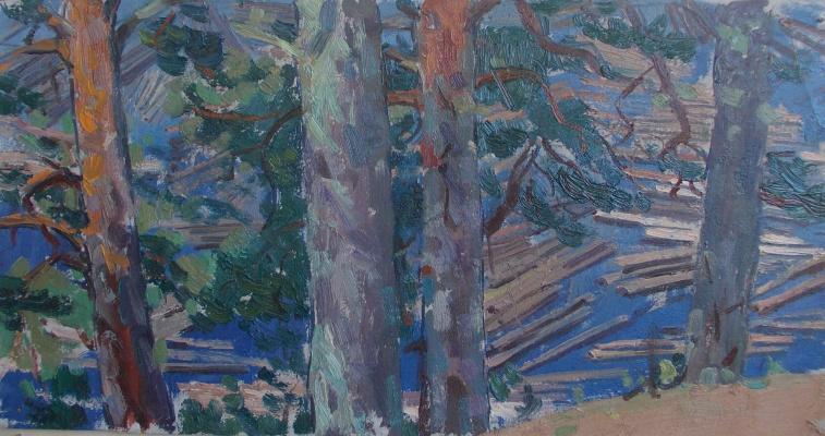 Nina Vasilievna Sedova. The forest is floating