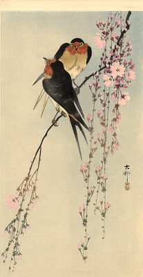 Ohara Koson. Barn swallows on blossoming cherry