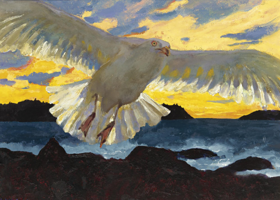 Jamie Wyeth. Seagull