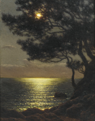 The coast in the moonlight