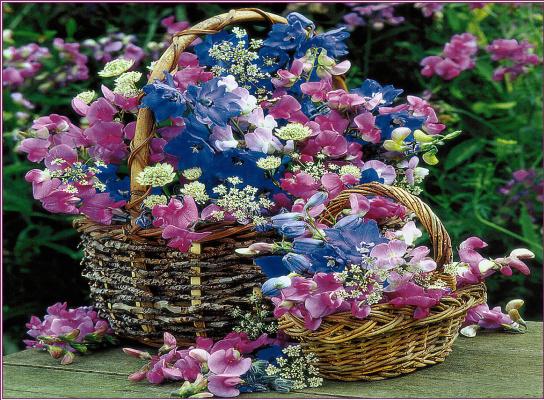 Две корзины цветов