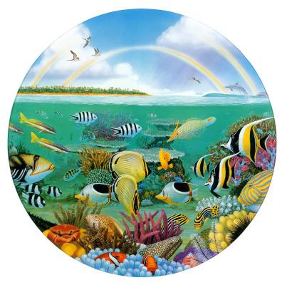 Чарльз Брэгг. Радужные рифы
