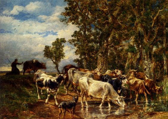 Стадо коров у корыта