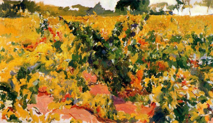 Joaquin Sorolla (Soroya). A sketch of the vineyard, sherry