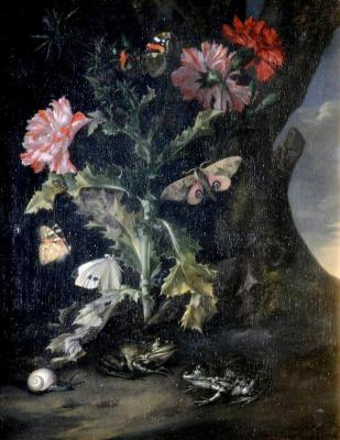 Виллем ван Алст. Натюрморт с гвоздиками