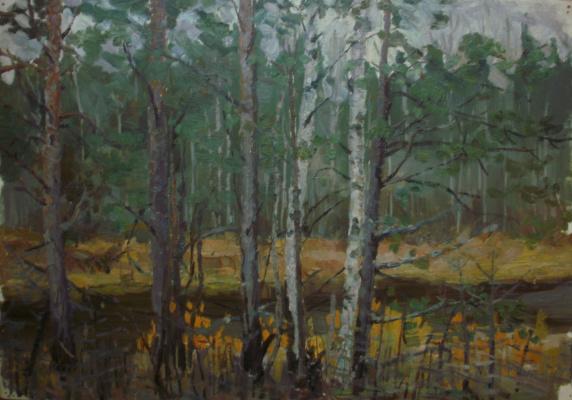 Nina Vasilievna Sedova. Forest etude