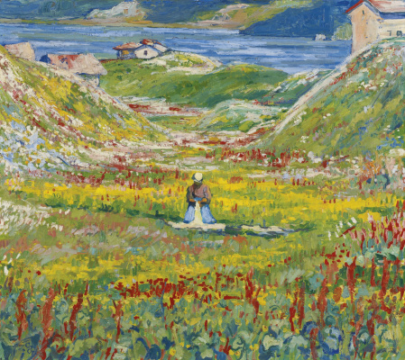 Giovanni Giacometti. Flowering meadow, Maloja, Switzerland