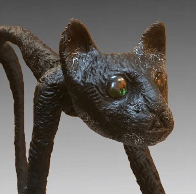 (no name). Masai cat