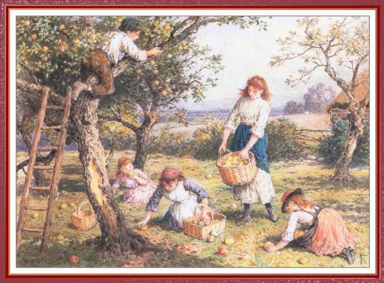 Майлз Беркет Фостер. Сбор урожая яблок