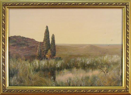 Евгений Геннадиевич Лактионов. Steppe pond