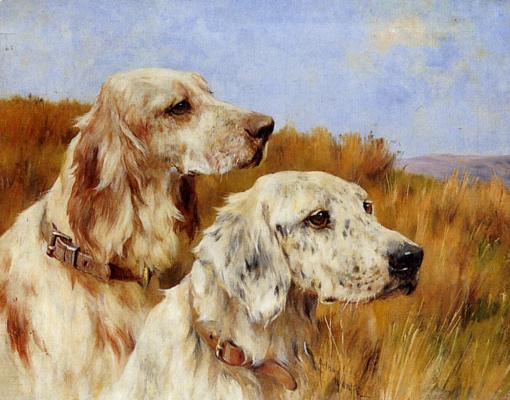 Артур Уордл. Две собаки
