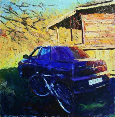 Михаил Рудник. Lada-sedan