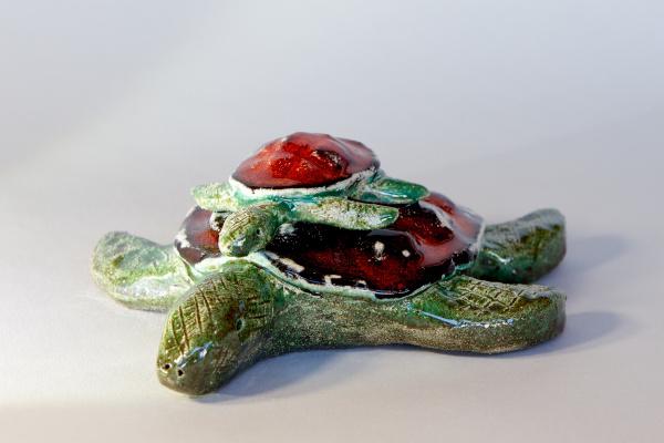 Евгений Морозов. Tortoise family