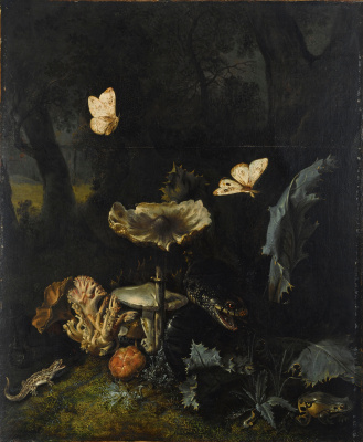 Otto Marceus van Scriec. Still life with mushrooms, a Viper and thistles
