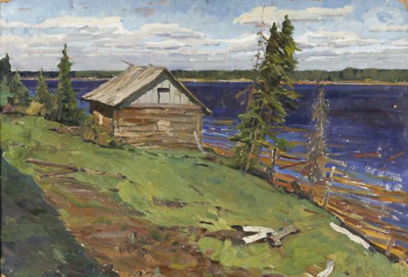 Eugene Nikolayevich Troshev. Country sauna
