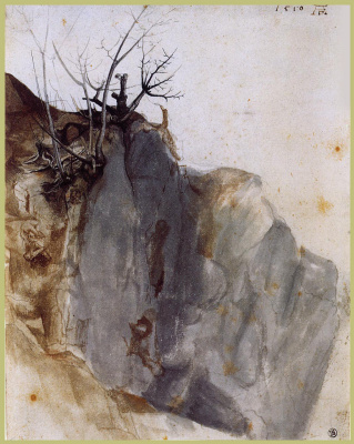 Albrecht Durer. Quarry