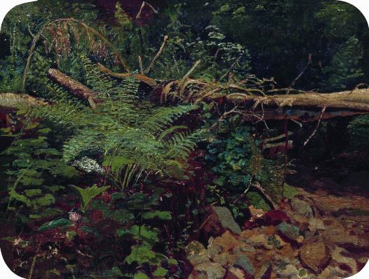 Ivan Ivanovich Shishkin. Landscape